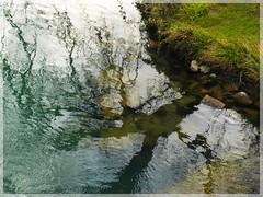 ([JBR]) Tags: eau agua riviere rio water reflet reflect reflejo tree arbre arbol nature autumn automne otono