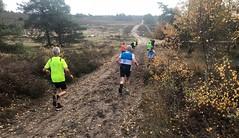 haarlerbergloop 10 km (43)