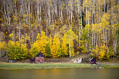 On golden pond (BDFri2012) Tags: fallcolor fallcolors fall cabin pond lake landscape reflection reflections aspentrees colorado colorful durango trees