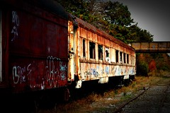 Abandoned Trains (Robert Scifo Photography) Tags: train passenger car boxcar abandoned explore transportation industrial nikon newjersey pine barrens tracks yard railways travel traintracks rails rail