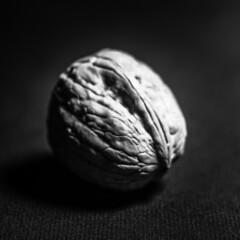 Nut (Jose Rahona) Tags: macromondays centersquarebw bw