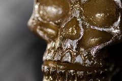 IMG_1554 (kev_zilla) Tags: macro closeup canon 77d 100mm usm alr dof skull gold candle