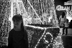 When you see it B&W (Esaú Alberto Canto Novelo) Tags: gransantafenorte navidad parques plazagransantafe christmas tree night streetphotography blackandwhite bw blancoynegro mérida
