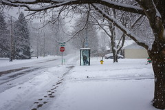 This Pedestrian Life (Bert CR) Tags: pedestrian winter snow weather waiting thispedestrianlife inclement precious moment busstop transit transitstop shelter canon 40d canon40d patience