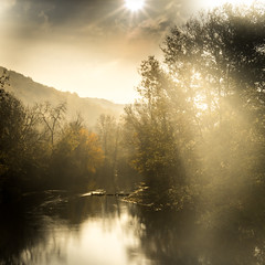 La Marne, Gudmont Villiers (Grandest, France) (Sivispacem...) Tags: sony a7ii zeiss 35mm28 landscape paysage river rivière automne autumn fall nature brouillad fog early morning sun tot matin