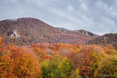 Jesen i Učka (MountMan Photo) Tags: učka bojejeseni autumncolors jesen autumn istra primorskogoranska croatia landscape planinskivrhovi