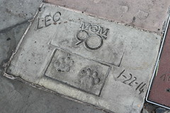 "Leo the Lion's Prints at the TCL Chinese Theatre • <a style=""font-size:0.8em;"" href=""http://www.flickr.com/photos/28558260@N04/45753632242/"" target=""_blank"">View on Flickr</a>"