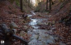 Mountain Creek (Ivica Pavičić) Tags:
