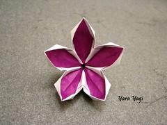 Lilac (Yara Yagi) Tags: origami paper papel flor flower syringavulgaris lilac
