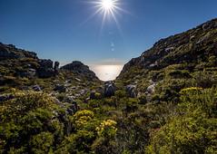 ON THE PATH TO WATER (Michael Leshets) Tags: landscape hill mountain range sky horizon over land scenics valley sunrays sunlight sun star green sea grass
