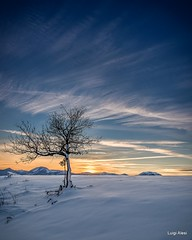 Tramonto invernale (luigi.alesi) Tags: italia italy marche macerata camerino torre beregna paesaggio landscape scenery tramonto sunset inverno winter neve snow cielo sky luce light nikon d750 raw natura nature allaperto outdoor