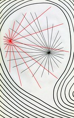 Interface (Daniel Ari Friedman) Tags: danielarifriedman drawing art pen paper ink freehand black red color