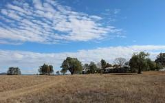 25 Airstrip Road, Bingara NSW