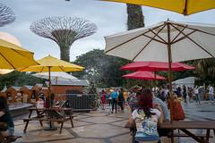 2018-12-Christmas-Wonderland_002 (laurenceputra) Tags: singapore christmaswonderland gardensbythebay lights night supertrees christmas wonderland