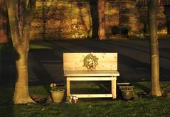 Sunlit Bench with Christmas Wreath (Gilli8888) Tags: nikon p900 coolpix northeast northumberland newbigginbythesea newbiggin bench light cemetery gravestones trees sunlight dusk woodhorn woodhornvillage wreath