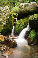 Waterfall Long Exposure (thomas.pirolt) Tags: india himachal pradesh mountain mountains sony sonya6000 a6000 samyang landscape theindiatree amazing himalaya water waterfall green 21mm 14 long exposure nd filter