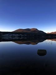 Landspeil -|- Land mirrored (erlingsi) Tags: reflection mirror land vatnevatn sunnmøre noreg norway speilet spegel winter straw strå lake vatn vann freshwater