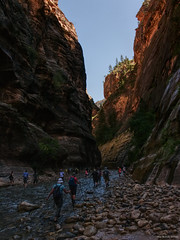 The Narrows, Zion NP (Utah) (Biff_Brown) Tags: utah canyonlands zionnp affinityphoto tonemapped panasonicg6 lumix