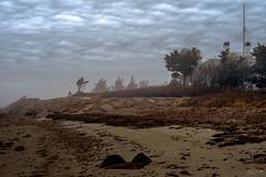 (Mr. Tailwagger) Tags: leica summilux 75mm m10 beach fog clouds seawall
