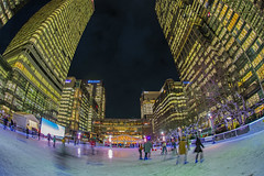 Skating business (Canary Wharf, London, United Kingdom)(Buon Natale!!!/Merry Christamas!!!) (AndreaPucci) Tags: canarywharf icerink london uk night christmas andreapucci