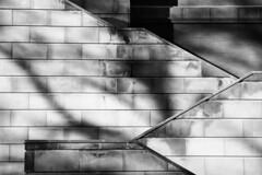 Stairway in Geometry (Richi Huang 李 Lee) Tags: steps stairs geometry walls blocks french lick resort west baden springs hotel skancheli