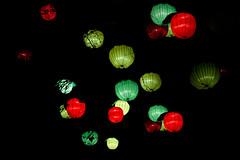 Paris, Espèce en voie d'Illumination (Calinore) Tags: paris jardindesplantes nuit espèceenvoiedillumination exposition décoration night species animals nature