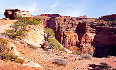 Island In The Sky #1 (jeandelalune) Tags: island in the sky canyonlands national park utah landscape