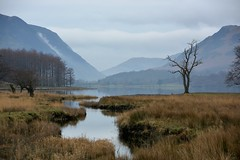 Leading towards Buttermere (moniquerebanks) Tags: buttermere lakedistrict cumbria unesco worldheritage peaceful landscape landschaft landschap merengebied stream hills lake nature natuur stroom contrast nikond7100 winter countryside countryliving lac lago heuvels mist