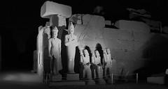 The Karnak Sound and Light Show, Luxor, Egypt. (ER's Eyes - Our planet is beautiful.) Tags: templeofkarnak karnak luxor egypt egito ancientegypt history templodekarnak soundandlight soundlight karnakshow thekarnaksoundandlightshow ancientthebes thebes tebas faraós pharaohs theancienttreasures thecomplexoftemples karnaktemple godamun amun kingsetii kingramsesii trinityofthebes amounre moot 2000bc kingtutankhamun kingramsis aladintours us25