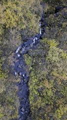 Autumnal flows (aerojad) Tags: hornafjörður easternregion iceland is dji mavic mavicpro dronephotography drone 2018 landscape vacation travel wanderlust iceland2018 autumn fallcolors fall leaves lookdown creek