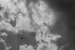 Looking up (mattb105) Tags: black white sky plane fine art light clouds moody