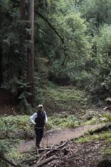 KLoE_img_9934 (kloe_chan) Tags: joaquin miller park hike oakland berkeley bay area family trees
