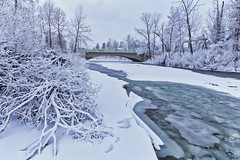 Elbow River Ice and snow (John Andersen (JPAndersen images)) Tags: bridge calgary canon cold daytime elbowriver frost polarvortex steam trees