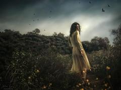 Hero ({jessica drossin}) Tags: jessicadrossin woman hair wind dress path sky storm birds ravens dark yellow grey wwwjessicadrossincom beautiful portrait