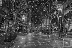 The Holiday Season (Theodore A. Stark) Tags: ifttt 500px 16th street mall 2018 canon christmas co colorado december downtown denve flash gps hdr holiday lights snow stark ted theodore a tstarkcom usa weather downtowndenve tedstark theodoreastark wet