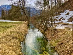 Brook near lake Kreutsee between Oberaudorf and Kiefersfelden, Bavaria, Germany (UweBKK (α 77 on )) Tags: brook creek water flow reflection winter snow grass brown tree lake kreutsee oberaudorf kiefersfelden bavaria bayern germany deutschland iphone