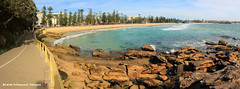 View along Manly Beach to North Steyne, Manly, NSW (Black Diamond Images) Tags: australia australianbeaches beach beachlandscapes beachpanorama landscape manlybeach nsw panorama sydney northsteyne manly msice panoramastitch pano msicestitch msicepanorama outdoor