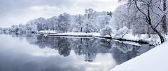Stockholm, December 17, 2018 (Ulf Bodin) Tags: sverige winter reflection spegling sweden outdoor snow snö morning vatten djurgårdsbrunnsviken vinter stockholm water canoneosr djurgården canonrf50mmf12lusm stockholmslän se