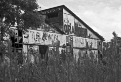 Strawn Citrus Packing House #1 (PositiveAboutNegatives) Tags: leica rangefinder m3 vintagecamera leicam3 leitz 50mm 50mmsummicrondr dualrange yellowfilter film analog bw blackandwhitefilm ilford fp4 rodinal standdeveloping coolscan florida abandoned derelict deserted empty