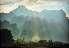 Ba Be - Vietnam - Haut Tonkin - Novembre 2018 (Philippe Hernot) Tags: vietnam tonkin nikond700 nikon buffle philippehernot kodachrome babe