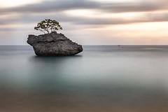 Rock of Ages (dmunro100) Tags: rock christmasisland indianocean flyingfishcove longexposure nd6 filter neutraldensity