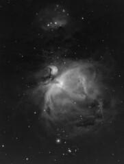 M42 Orion Nebula in Ha (gmaehlum) Tags: astrophotography m42 orion ha asi1600 astrometrydotnet:id=nova3185148 astrometrydotnet:status=solved