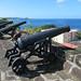 Guns of Fort George