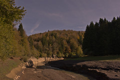 Navarra 2018 (Miguel Angel968) Tags: 2018 irati navarra forest bosque otoño autumn