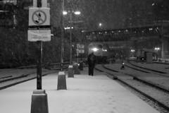 094 -1bwfwlcon1stpf (citatus) Tags: man eastbound go train 663 snow storm union station fall evening 2018 pentax k3 ii bw toronto canada commuter