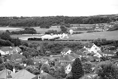 'Torquay Manor' (Better Living Through Chemistry37 (Archive3)) Tags: 7827 lydhammanor broadsandsviaduct mono 7800 torquaymanor