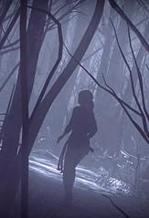 """Nightmare"" (L1netty) Tags: riseofthetombraider tombraider crystaldynamics eidosmontreal squareenix pc game gaming pcgaming videogame reshade screenshot 5k srwe character laracroft lara girl female people forest trees snow color outdoor"