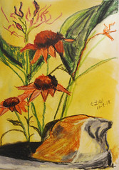 pa0213 (clw_and_dog) Tags: contemporarydrawings modernartdrawings contemporaryrealisticdrawings artists americanartist contemporaryoriginaldrawings inkdrawing worksonpaper pencildrawing flowers flower pictures garden flowering floral plants photos gardens plant flowerpictures picturesofflowers