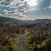 Hill trails