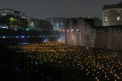 Beyond The Deepening Shadow, Tower of London (Alex J Donohue) Tags: tower london wwi armistice day november 11th 100th anniversay world war 1 beyond the deepening shadow remembrance sunday england